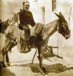 José Régio William Golding, Portuguese Culture, A 17, Camel, Horses, Animals, Painting, Portugal, Seals