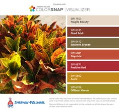 I found these colors with ColorSnap® Visualizer for iPhone by Sherwin-Williams: Fragile Beauty (SW 7553), Fired Brick (SW 6335), Eminent Bronze (SW 6412), Cayenne (SW 6881), Positive Red (SW 6871), Auric (SW 6692), Offbeat Green (SW 6706).