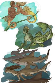 Magical Creatures, Fantasy Creatures, Sea Creatures, Mermaid Man, Siren Mermaid, Mermaid Drawings, Mermaids And Mermen, Merfolk, Mythological Creatures