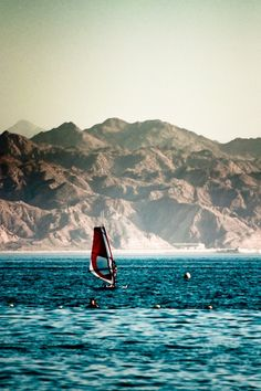 The Coast of Eilat