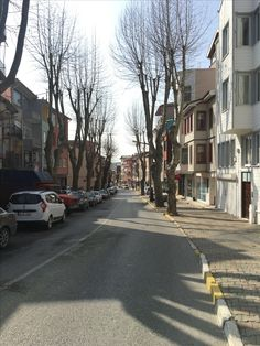 Real İstanbul Street and houses Beykoz, İstanbul