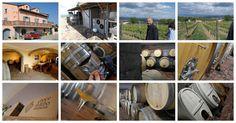 Wine Blog Roll - Il Blog del Vino in Italia: Cantina Croce di Febo - A Montepulciano il bio-consapevole di Maurizio Comitini