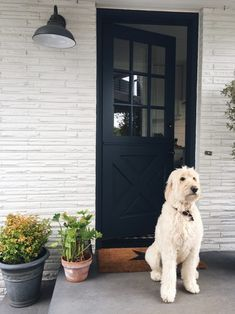 wall paint color White Painted Brick House with Navy Blue Dutch Door – The Inspired Room Image Size: 650 x 867 Source Exterior House Colors, Exterior Paint, Exterior Design, Navy Blue Houses, White Brick Houses, Painted White Brick House, Painted Brick Exteriors, Paint Your House, Dutch Door