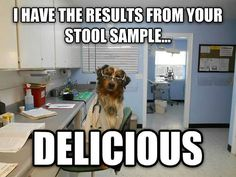 The results of your stool sample...