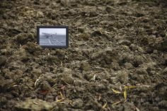DAG 317: THE DAY AFTER RAAD VAN STATE De Raad van State bepaalde dat de Hedwigepolder ontpolderd mag worden. Project 4.12.365 http://phototroost.com/gallery/365/ #P412365 #terneuzen #zeeuw #zeeland #zvl #hedwigepolder #photography #fotografie #vlaming #imageoftheday #pictureoftheday