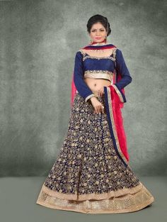 Navy Blue Net Lehenga Choli with Embroidery Work