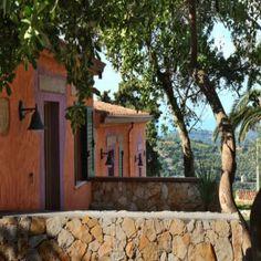 Balcony through the olive trees