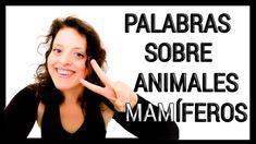 🖤 VOCABULARIO de YOGA🖤 : APRENDE 5 nombres de ANIMALES mamíferos 🐫🦁 🐶🐮🐴 Youtube, Animals, Names Of Animals, Yoga Poses, Vocabulary, Words, Animales, Animaux, Animais