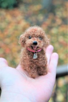 Some of the things I admire about the Active Poodle Puppy Toy Poodle Red, Toy Poodle Puppies, Needle Felted Animals, Felt Animals, Wet Felting, Needle Felting, Felt Dogs, Felting Tutorials, Felt Art