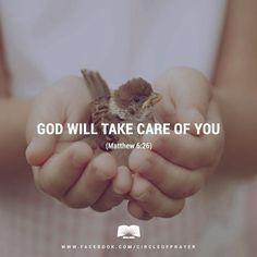 God takes care of birds in the sky. Every day He provides them with shelter and food they need to survive. How much more does He care for you, the one made in His own image? The one He sent His own son to die for?