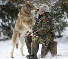 Wow! Wolf kisses