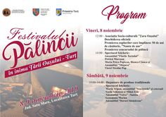 Festivalul Pălincii Event Ticket