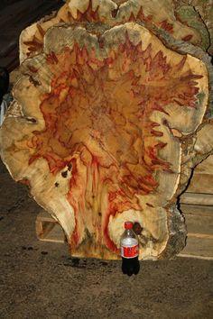 39x30x4 Flame Box Elder Maple Wood Slab Exotic Lumber