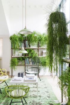 Hang your plants high and near windows to create the illusion of greenery outside. Not only will your plants grow better, you'll also breathe better with fresh oxygen flowing through the plants'...