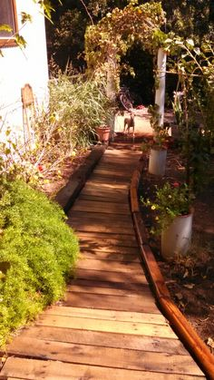 The newest walkway at the front of the house