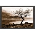 Danita Delimont 'Loch Etive' Framed Artwork | Overstock.com Shopping - The Best Deals on Prints