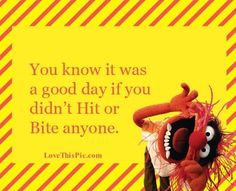 You know it was a good day funny quotes quote jokes lol funny quotes funny sayings humor