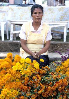 Flower Seller Patzcuaro sempasuchi,la  flor del dia de muertos (esta correcto sempasuchi?)
