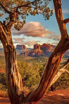 angel-kiyoss: Sedona, Arizona