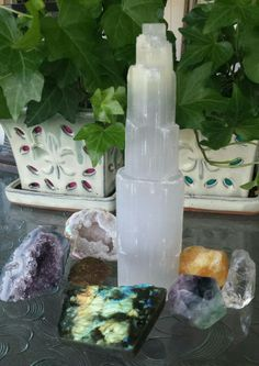 Selenite tower sentinel stands watch over other crystals