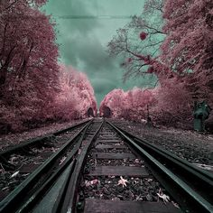 My magical railway, Somme, France