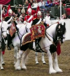 Drum Horse Information (I so want one of these!! LC)