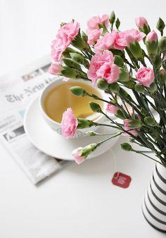 teacup tea teehetki flowers