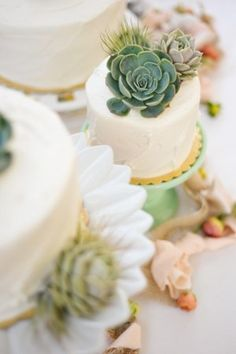 succulent wedding cake toppers