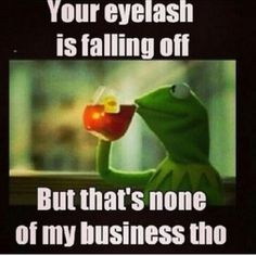 15 Even Funnier Kermit The Frog Memes Part 2 - NoWayGirl