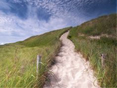 Sand dunes at Skagen, Jutland, Denmark. Read more: http://www.visitnordjylland.com/ln-int/places/skagen