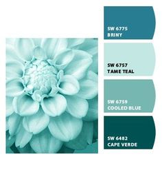 pretty teal thinking colors for bathroom