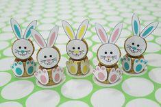 chocolate de páscoa, lembrancinha de páscoa, coelhinhos, chocolate, easter, bunny, chocolate