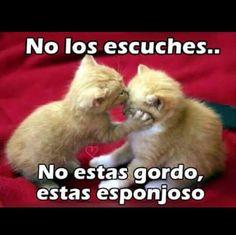 Así es!                                                                                                                                                      More