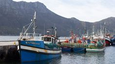 Picturesque Hout Bay south of Cape Town.