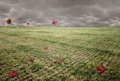 Surreal, Long Exposure Photographs Of Rural Farmlands