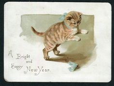 Victorian  New Year  Card,  Cat with blue bow and Shuttlecock.. 1890. Helena Maguire.