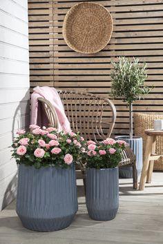 Se årets nye krukker til terrassen | Inspirasjon fra Mester Grønn