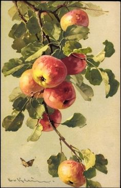 Postcard Künstler Ak Catharina Klein, Äpfel, Schmetterling