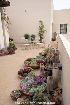 Admirable Desert Garden Landscaping Ideas for Home Yard