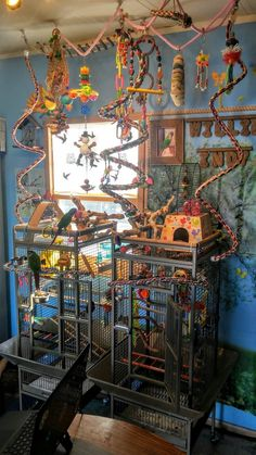 That is just awesome, agh I want a green cheek #aviariesdiy #buildaviary