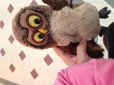 Found on 07 Oct. 2015 @ Glades/Intu Shopping Centre, Bromley, BR1 1DN. Owl hand puppet found on the lower level of the Glades/Intu shopping centre in Bromley. Handed in to the customer service desk on the upper shopping level Visit: https://whiteboomerang.com/lostteddy/msg/devky0 (Posted by Trevor on 07 Oct. 2015)
