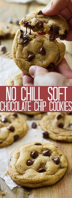 These No Chill Soft Chocolate Chip Cookies are soft, chewy, filled with chocolate chips and require no chilling time! These No Chill Soft Chocolate Chip Cookies are soft, chewy, filled with chocolate chips and require no chilling time! Oreo Dessert, Tiramisu Dessert, Easy Cheesecake Recipes, Oreo Cheesecake, Easy Cookie Recipes, Basic Cookie Recipe, Yummy Recipes, Homemade Chocolate Chip Cookies, Chocolate Chip Recipes