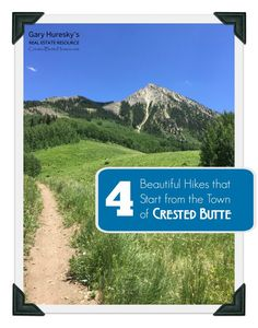 The national forest surrounding Crested Butte has a plethora of wonderful hiking trails. During the summer months, you'll see flowers everywhere, and you're likely to see some wildlife roaming… read more → Crested Butte, Summer Months, During The Summer, National Forest, Hiking Trails, Mount Rainier, Wildlife, Real Estate, Mountains