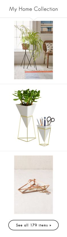 """""""My Home Collection"""" by amber2727 ❤ liked on Polyvore featuring home, home decor, metal plant stand, metal planters, metal pot, urban outfitters, metal home decor, office accessories, fillers and office"""