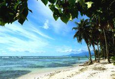 On aime la jolie #plage de Bois Jolan...