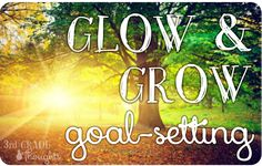 Grade Thoughts - Glow and Grow goal setting Behavior Management, Class Management, Classroom Management, 3rd Grade Thoughts, Student Led Conferences, Learning Targets, Whole Brain Teaching, 5th Grade Reading, Leader In Me