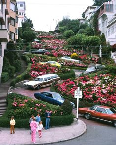 Lombard Street, San Francisco, US. Lombard Street, San Francisco City, San Francisco Travel, San Francisco California, Visiter San Francisco, San Francisco Pictures, San Francisco Photography, Destinations, Places To Go
