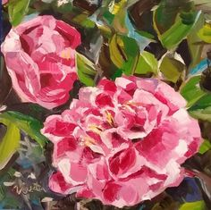 Pink Camellias - original oil painting, by Vicky Curtin