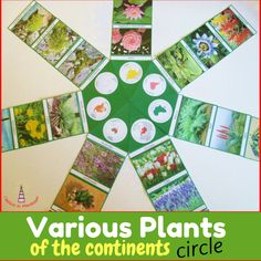 Various Plants of the continents Montessori-inspired circle cards printables