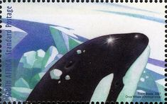 (International Polar and Heliophysical Orca Whale) Union Of South Africa, Killer Whales, Afrikaans, Postage Stamps, Mammals, African Animals, Sea Turtles, Birds, Whales